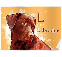 L is for Labrador Poster