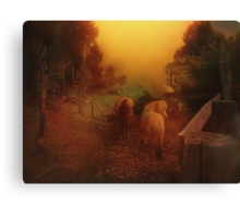 Misty Sundown Canvas Print