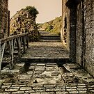 Steps back in Time by Vicki Field