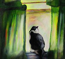Kuzak, The Black & White Cat by hickerson