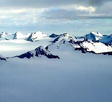 Alaska Scenery by micavd