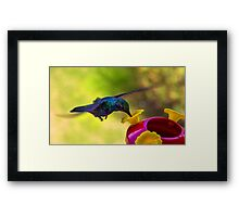 Gripping The Air Framed Print