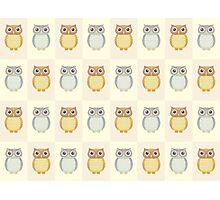 Many Owls Photographic Print