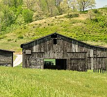 Barn - Tire Center by mcstory