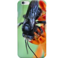 Black Bumble iPhone Case/Skin