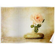 Vintage Rose - JUSTART © Poster