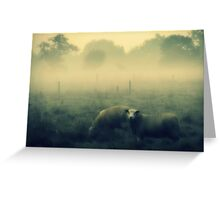 Dreaming of Sheep - JUSTART © Greeting Card