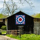 Kentucky Barn Quilts by mcstory