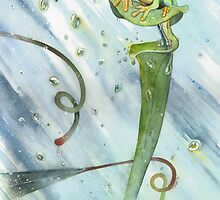 Madagascan Tree Frog on Pitcher Plant With Raindrops by Ray Shuell