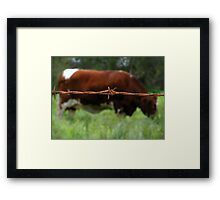"""""""RUSTY COW"""" Best Viewed Large Framed Print"""
