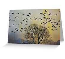Bird Watching - JUSTART © Greeting Card