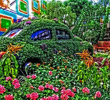 flower power beetle by Manon Boily