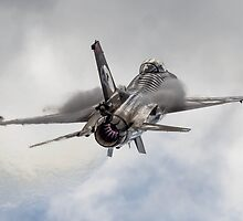 General Dynamics F-16 Fighting Falcon by Z3roCool
