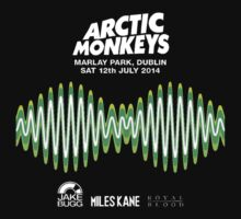 Arctic Monkeys Dublin 2014 Gig by CosmicTesticles