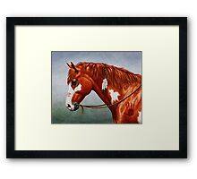 Native American War Horse Framed Print