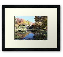 Autumn Reflection 2 Framed Print
