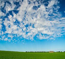Green field and big skies near Ballarat by Nils Versemann