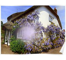 Clothed in Wisteria Poster