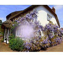 Clothed in Wisteria Photographic Print