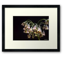 Fairy Bells Framed Print