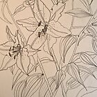 Lilies.  Pen sketch EMoore Golding© by Elizabeth Moore Golding