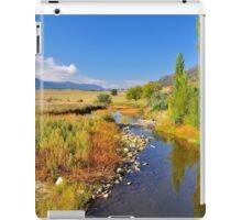 Naas River iPad Case/Skin
