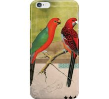Animal Collection by Elo -- Birds iPhone Case/Skin