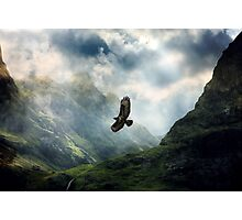 The Light of Flying Photographic Print