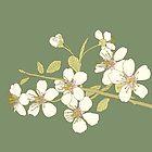 Cherry blossom by SIR13