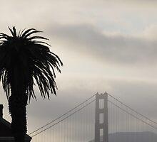 San Francisco Evening by ahlasny