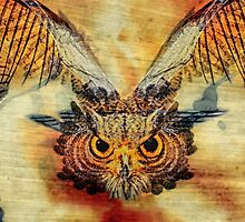 Soul of the Owl by Walter Rastelli