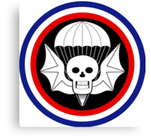 502nd Airborne Infantry Regiment - WWII Canvas Print