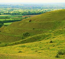 Hambledon Hill by RedHillDigital