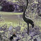Country Garden Calender # 1 by Sandra Foster