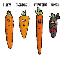 Types of carrot by nonstopjamhen
