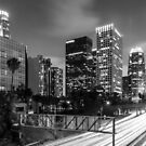 Los Angeles by Radek Hofman