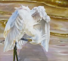 Brilliant White Snowy Egret by Phyllis Beiser
