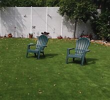 Lawn Chairs by Kevin Gallagher