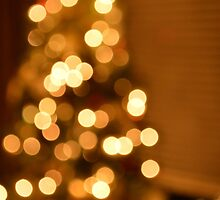 Christmas Lights by NatalieCollette