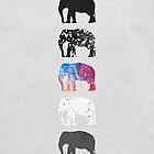 Five Elephants by Elisabeth Fredriksson