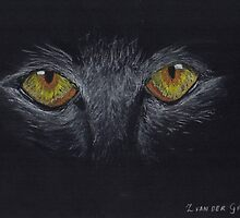 Eyes In The Dark by Zilpa van der Gragt