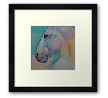 Lipizzan Stallion Framed Print