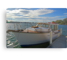The family boat Metal Print