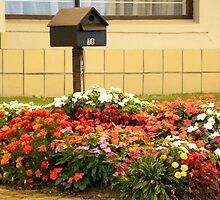 A Springtime welcome to the mailman! by Pieta Pieterse