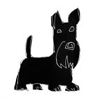Scottish Terrier by Matt Mawson