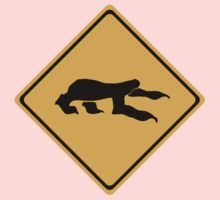 Sloth Crossing Kids Clothes