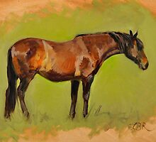'Bay Mare' (sketched from life) by Laura Barber-Riley
