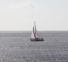 Sailing Boat on grey Sea by stine1