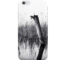 old groin iPhone Case/Skin