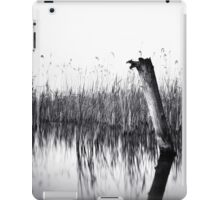 old groin iPad Case/Skin